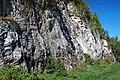 Dunham Dolomite (Lower Cambrian; Route 2 roadcut, southeast of the Lamoille River bridge, Vermont, USA) 11.jpg
