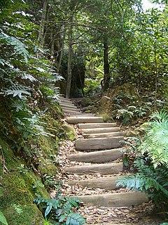 Blue Mountains walking tracks walking trail in New South Wales, Australia