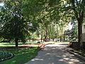 Edwards Gardens3.JPG