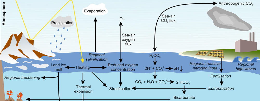 Effects of climatic changes on the ocean (cropped).png