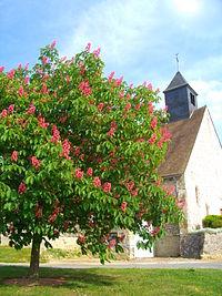 Eglise St-Michel de Les Essarts le Vicomte.JPG