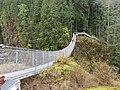 Elk Falls Provincial Park & Suspension Bridge.jpg