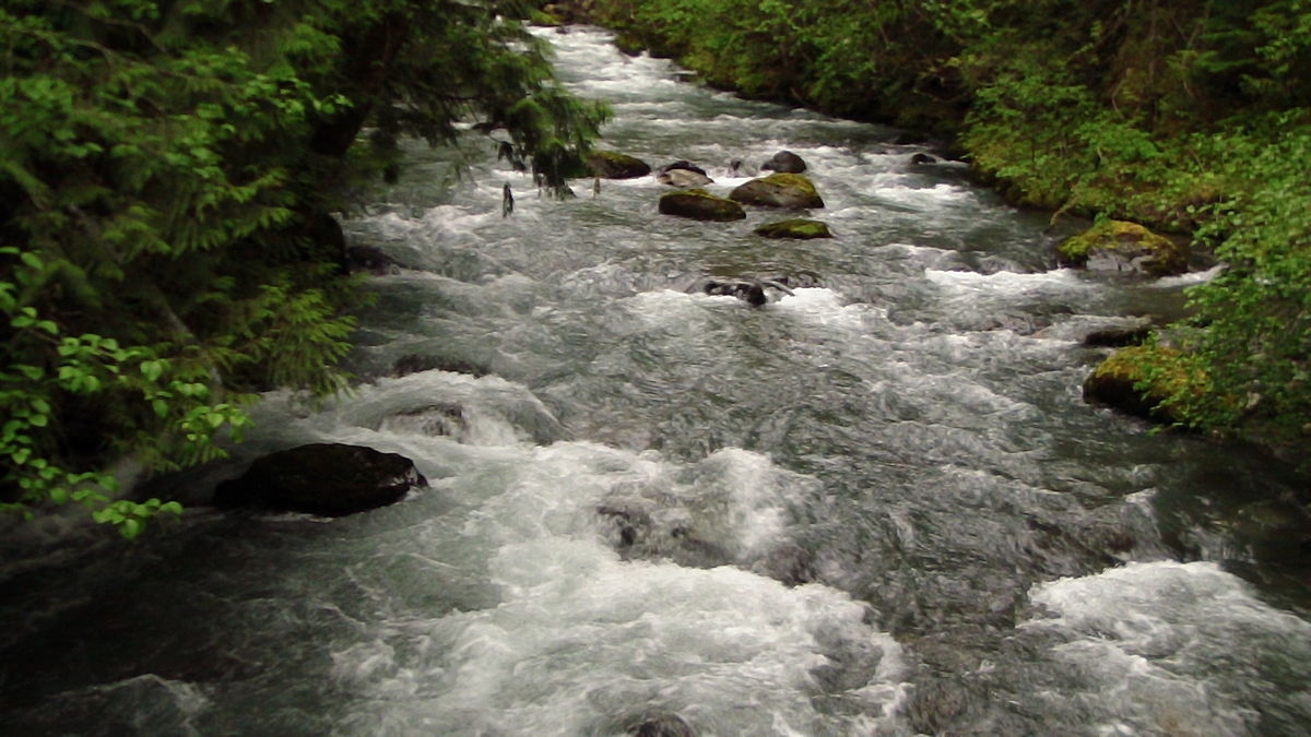 Olympic National Park - Wikipedia