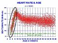 Embryofetal Heart Rates.jpg