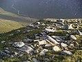 End of the easterly ridge of Glas Bheinn Mhor - geograph.org.uk - 247983.jpg