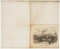 Equus zebra - 1700-1880 - Print - Iconographia Zoologica - Special Collections University of Amsterdam - UBA01 IZ21700002.tif
