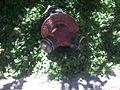 Extintor CMDLT 2012 000.jpg