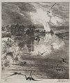 Félix Bracquemond - Swallows - 1920.303 - Cleveland Museum of Art.jpg