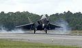 F-22 Raptor lands - 030929-F-0000J-001.jpg