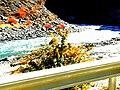 Fall in Hunza-basraa-26.jpg