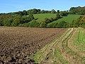 Farmland, Radnage - geograph.org.uk - 1014203.jpg