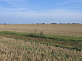Farmland south of Whittlesford, Cambs - geograph.org.uk - 53048.jpg