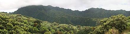 Photo montrant les montagnes et la jungle du centre de l'île.