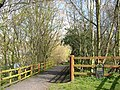 Fens Pools Nature Reserve, near Brierley Hill, West Midlands - geograph.org.uk - 387813.jpg