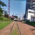 FerroviaAssis.jpg