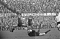 Feyenoord tegen NAC 1-1, keeper Van der Merwe pakt bal van voeten Kindvall verde, Bestanddeelnr 919-9119.jpg