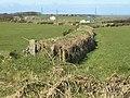 Field boundary, Trehane - geograph.org.uk - 733154.jpg