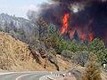 Fire near U.S. 26 (14641855616).jpg