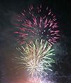 Fireworks (5627501420).jpg