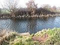 Fishing platform no. 1 - geograph.org.uk - 2265533.jpg