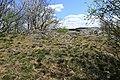 Flächennaturdenkmal bei Zwönitz 2H1A2533WI.jpg