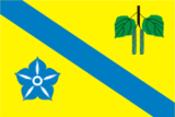Flag of Bereznivskiy Raion in Rivne Oblast.png