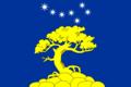 Flag of Pyaozerskoe (Karelia).png