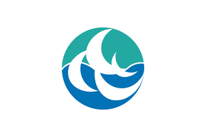Shūnan - Image: Flag of Shunan, Yamaguchi