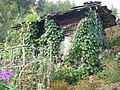 Flower garden - panoramio.jpg