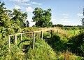 Footbridge, Cowgrove - geograph.org.uk - 1438132.jpg