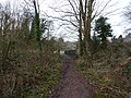 Footpath and bridge over the River Trym - geograph.org.uk - 1705371.jpg