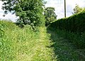 Footpath off Paudy Lane - geograph.org.uk - 859000.jpg