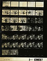 Ford A9407 NLGRF photo contact sheet (1976-04-28)(Gerald Ford Library).jpg