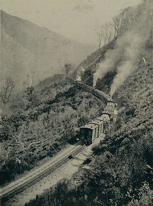 Rimutaka Incline - The long slow climb up the centre rail