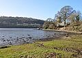 Fowey estuary at St Winnow 1.jpg