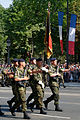 Franco-German Brigade Bastille Day 2013 Paris t104921.jpg