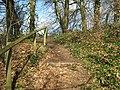 Fyne Court nature trail 3 - geograph.org.uk - 1197324.jpg