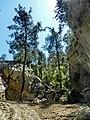 Göynük Kanyon - panoramio (32).jpg