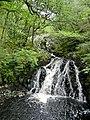 Ganllwyd NNR - panoramio (16).jpg