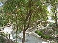 Garden Tomb P1190163.JPG