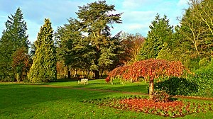 Nonsuch Park - The gardens of Nonsuch Mansion