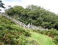 Gate and stile on path south of Hafod y fedw - geograph.org.uk - 540805.jpg