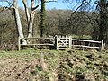 Gated footbridge - geograph.org.uk - 1162389.jpg