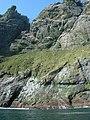 Gearrgeodha north Boreray - geograph.org.uk - 1297085.jpg