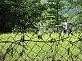 Giocolieri - panoramio.jpg