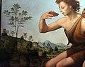 Giuliano bugiardini, san giovannino nel deserto, 1523-25, da s. stefano 03.jpg