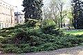 Gliwice - panoramio (73).jpg