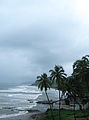 Goa - An Overcast Season (29).JPG