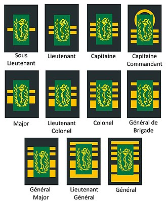 Belgian military ranks - Image: Grades de pharmaciens