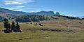 Gran palusc Mont de Seuc.jpg